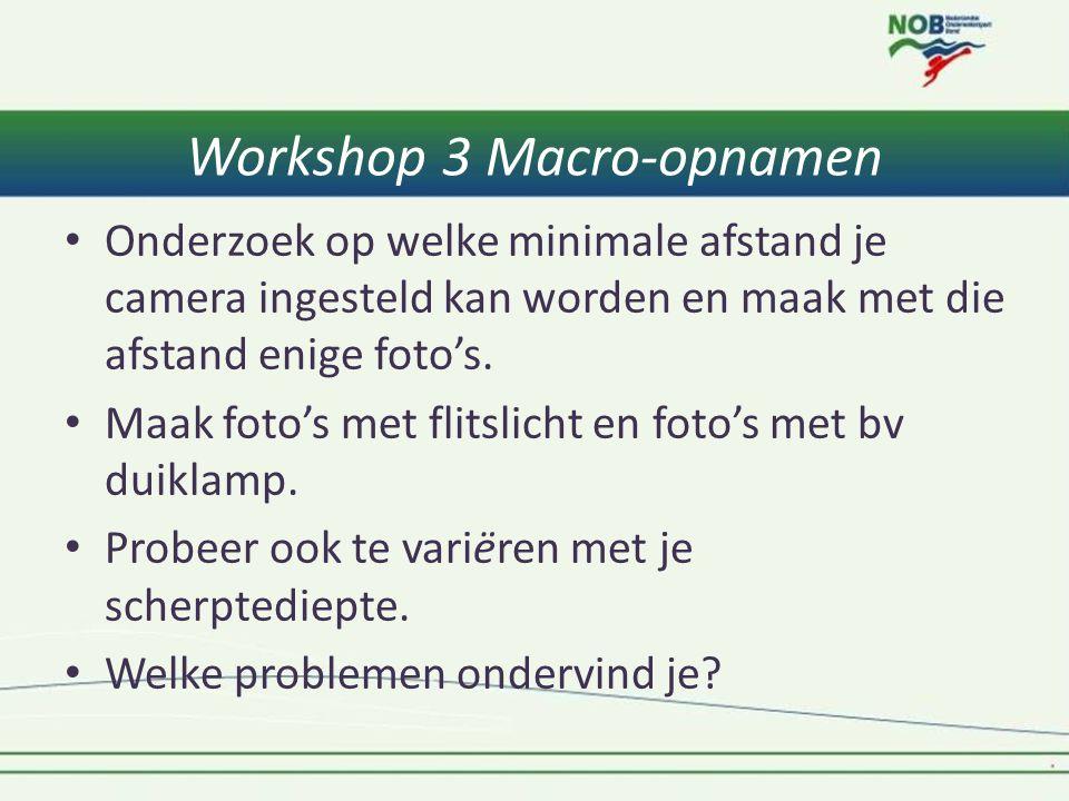 Workshop 3 Macro-opnamen • Onderzoek op welke minimale afstand je camera ingesteld kan worden en maak met die afstand enige foto's. • Maak foto's met
