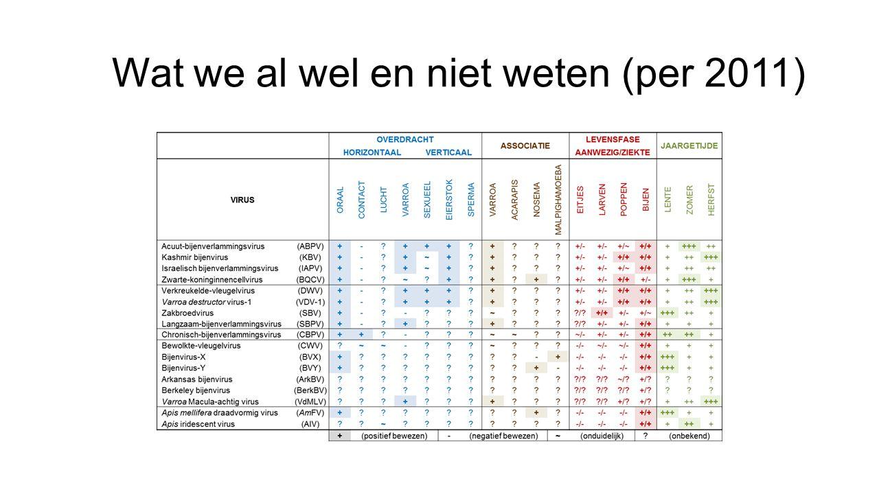 Voorstel • Belangrijkste virusziekten • In Europa meest aangetroffen (in zieke en gezonde volken) • DWV, SBV, BQCV, ABPV, CBPV met Nederlandse namen • Hierna per virus cf.