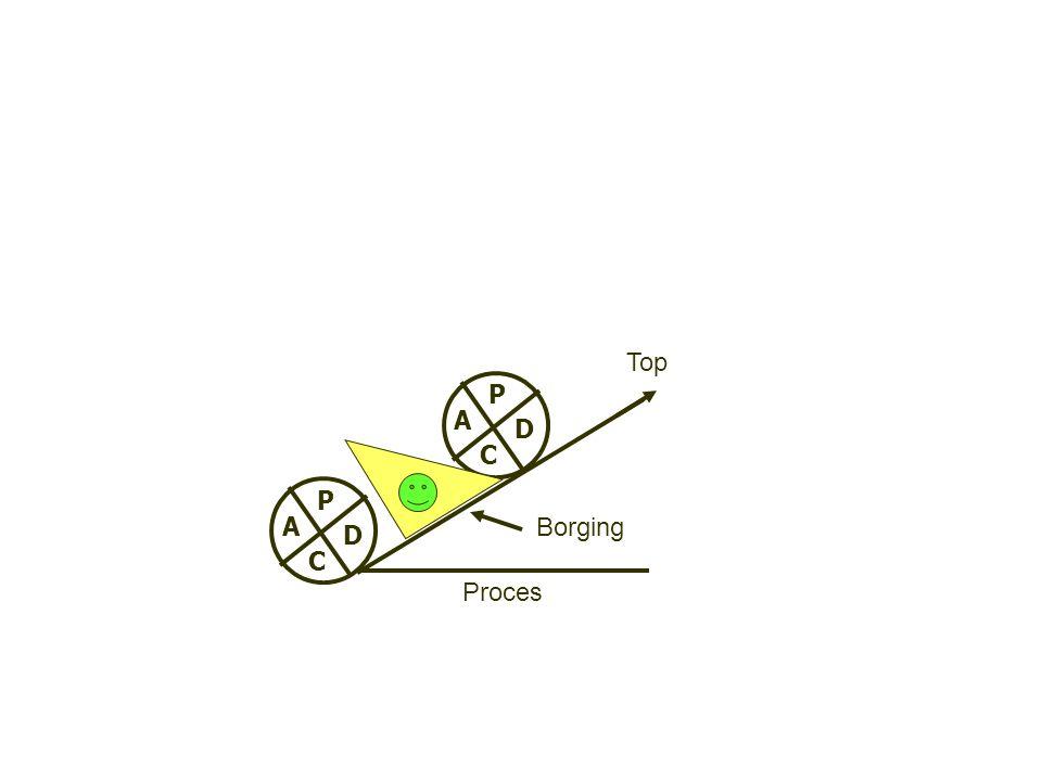 P D C A Borging Top Proces P D C A