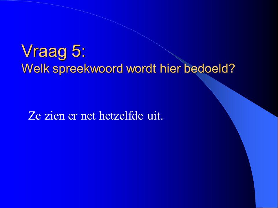 Vraag 5: Welk spreekwoord wordt hier bedoeld? Ze zien er net hetzelfde uit.
