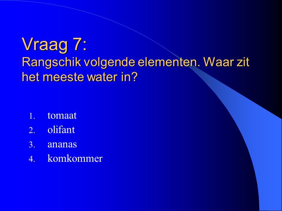 Vraag 7: Rangschik volgende elementen. Waar zit het meeste water in? 1. tomaat 2. olifant 3. ananas 4. komkommer