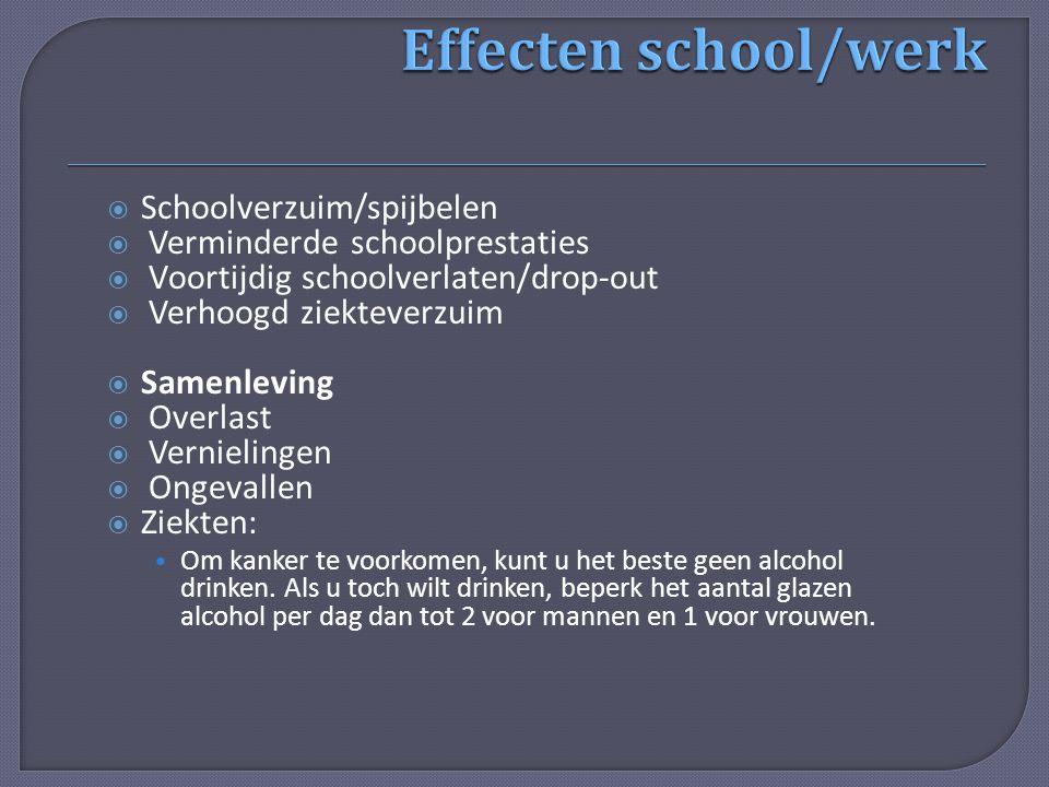  Schoolverzuim/spijbelen  Verminderde schoolprestaties  Voortijdig schoolverlaten/drop-out  Verhoogd ziekteverzuim  Samenleving  Overlast  Vern