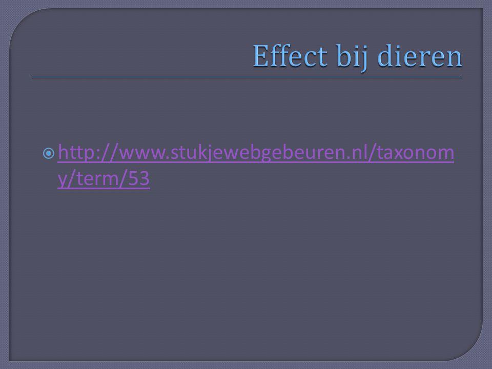  http://www.stukjewebgebeuren.nl/taxonom y/term/53 http://www.stukjewebgebeuren.nl/taxonom y/term/53