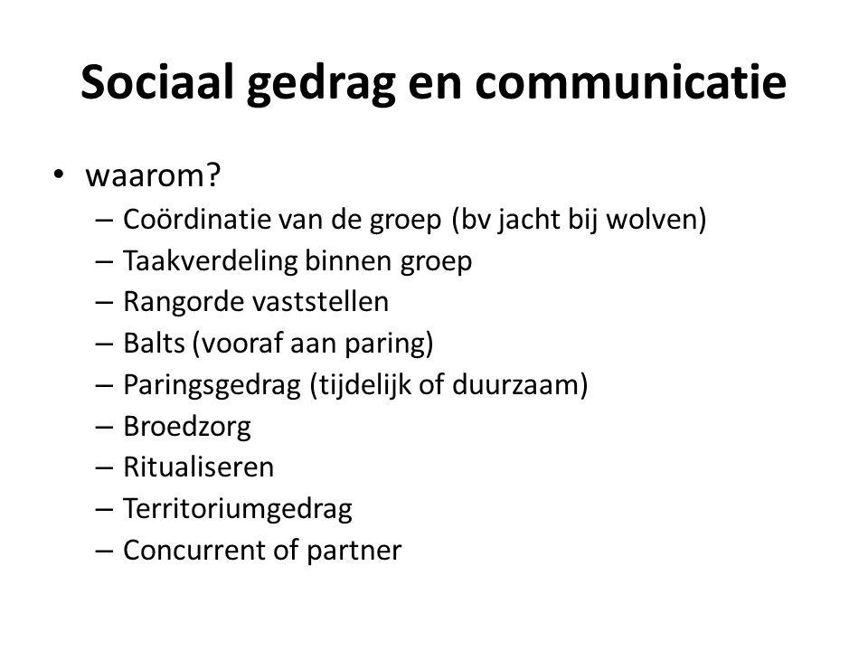 Sociaal gedrag en communicatie • waarom? – Coördinatie van de groep (bv jacht bij wolven) – Taakverdeling binnen groep – Rangorde vaststellen – Balts
