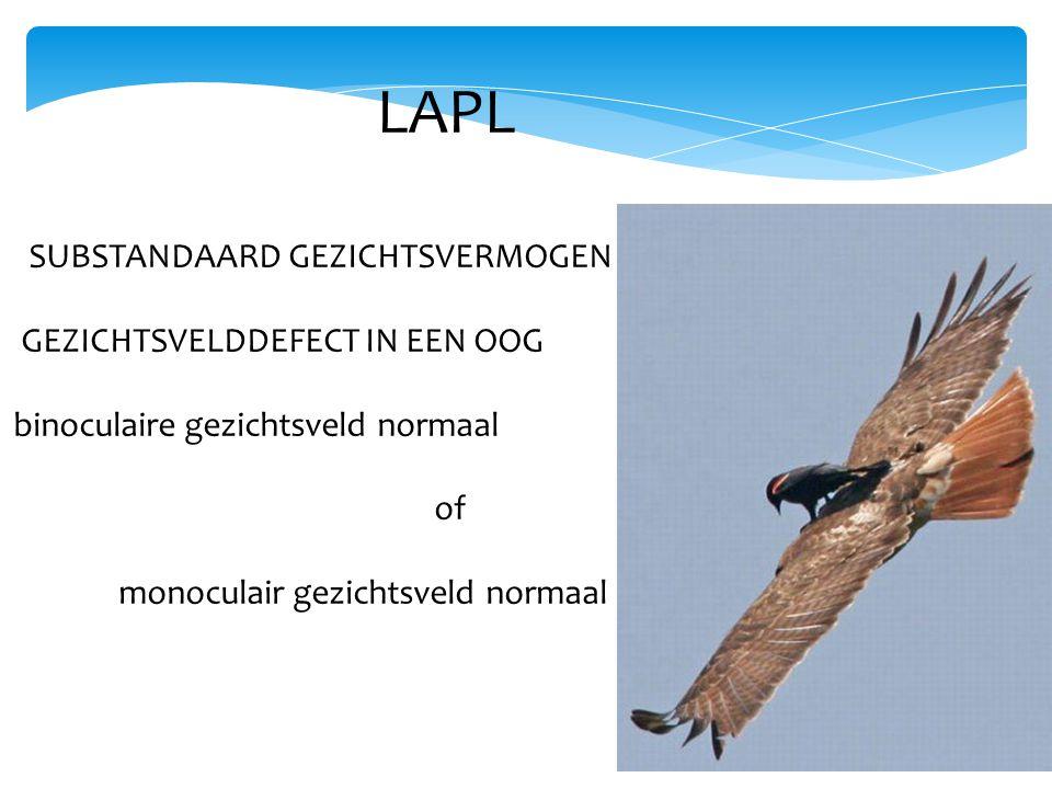 LAPL SUBSTANDAARD GEZICHTSVERMOGEN GEZICHTSVELDDEFECT IN EEN OOG binoculaire gezichtsveld normaal of monoculair gezichtsveld normaal
