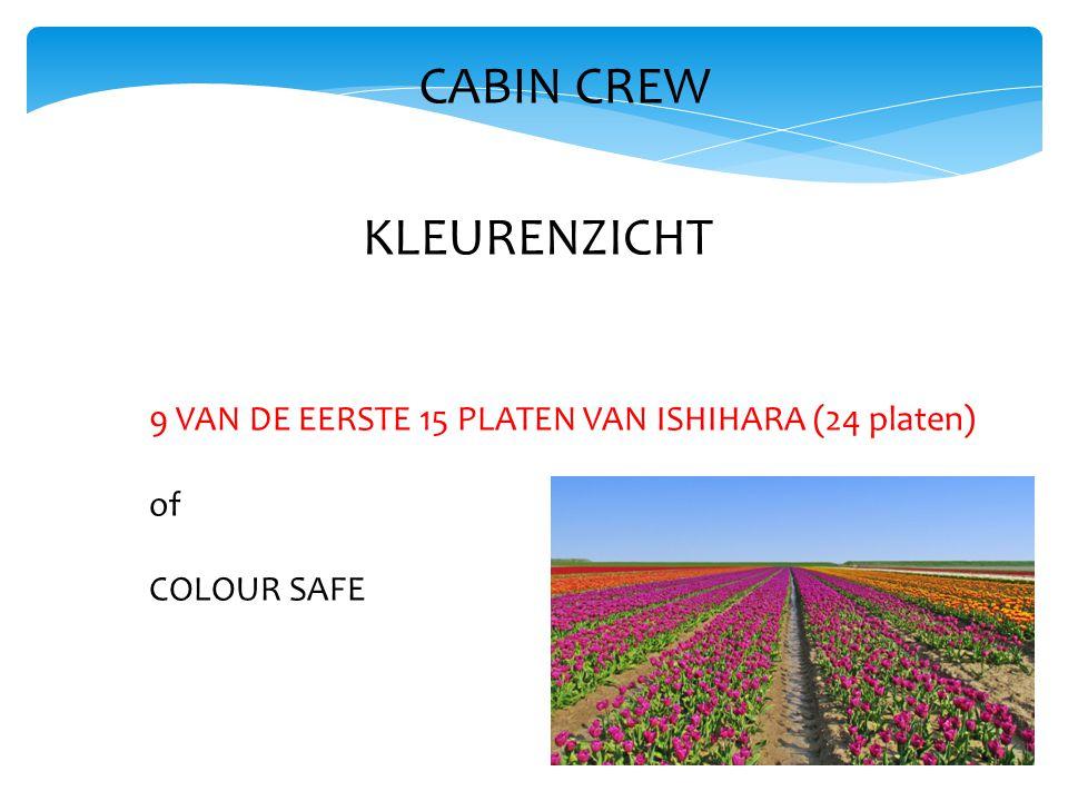 CABIN CREW KLEURENZICHT 9 VAN DE EERSTE 15 PLATEN VAN ISHIHARA (24 platen) of COLOUR SAFE
