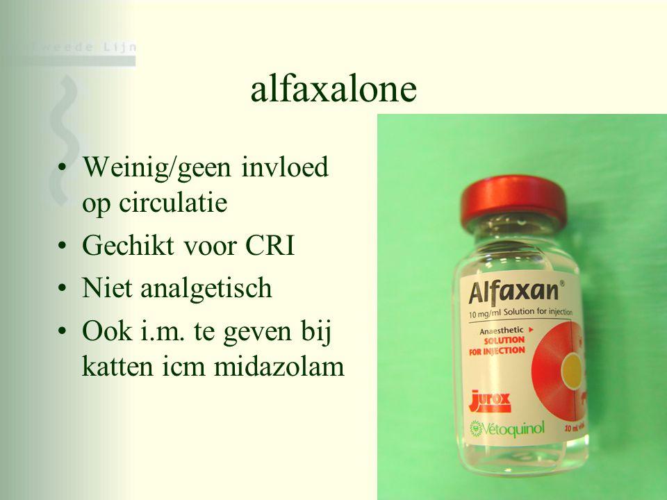 alfaxalone •Weinig/geen invloed op circulatie •Gechikt voor CRI •Niet analgetisch •Ook i.m. te geven bij katten icm midazolam