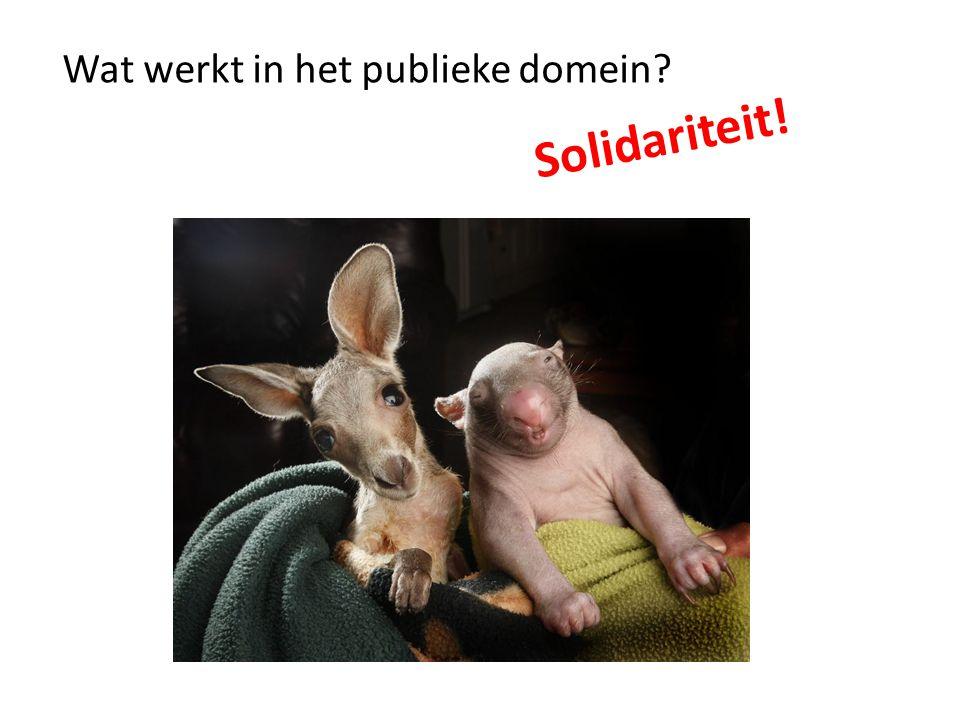 Wat werkt in het publieke domein? Solidariteit!