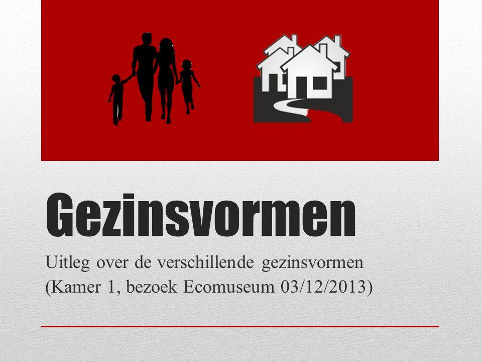 Gezinsvormen Uitleg over de verschillende gezinsvormen (Kamer 1, bezoek Ecomuseum 03/12/2013)