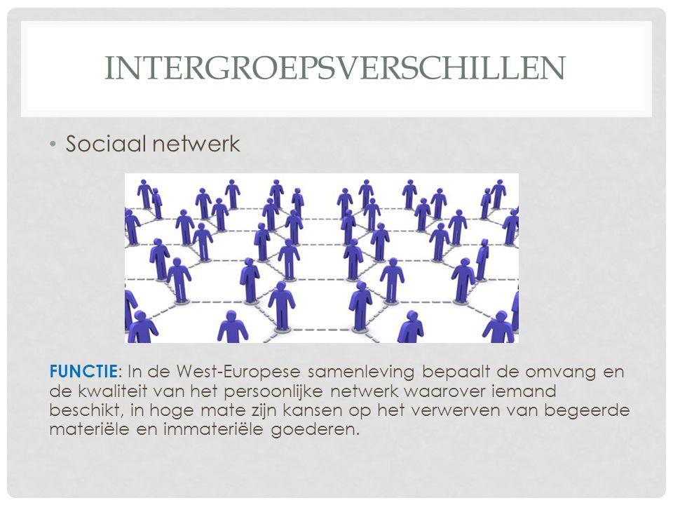 INTERGROEPSVERSCHILLEN • Sociaal netwerk FUNCTIE : In de West-Europese samenleving bepaalt de omvang en de kwaliteit van het persoonlijke netwerk waarover iemand beschikt, in hoge mate zijn kansen op het verwerven van begeerde materiële en immateriële goederen.