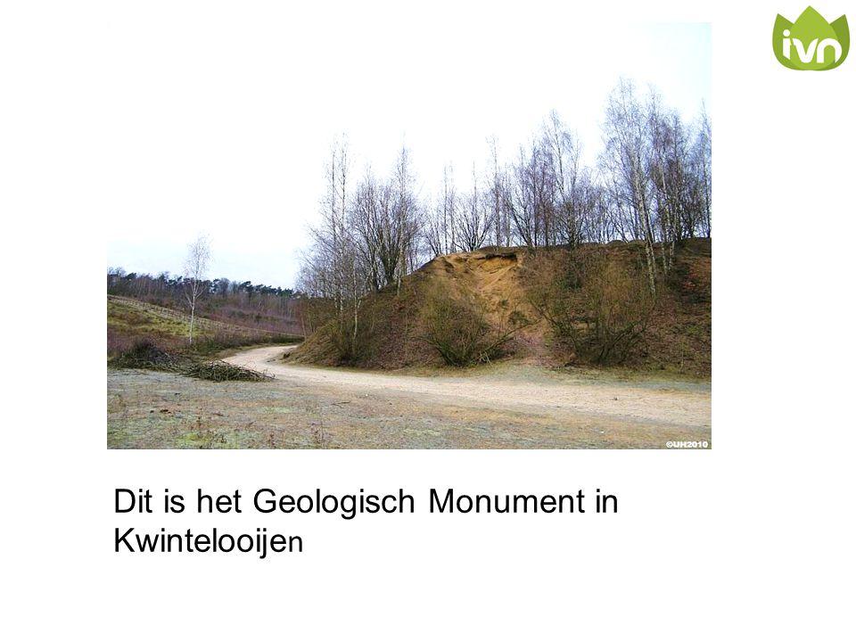Dit is het Geologisch Monument in Kwintelooije n