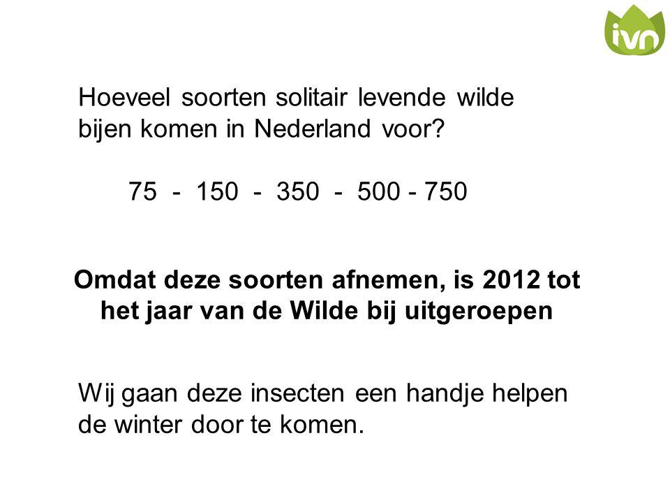 Omdat deze soorten afnemen, is 2012 tot het jaar van de Wilde bij uitgeroepen Hoeveel soorten solitair levende wilde bijen komen in Nederland voor? 75