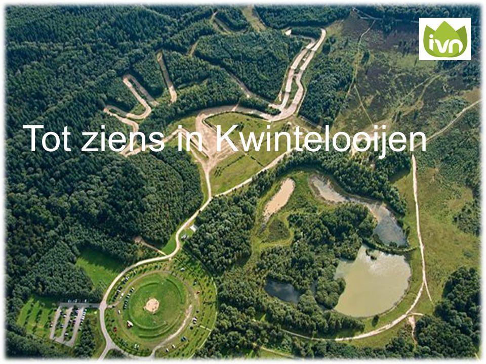 Tot ziens in Kwintelooijen