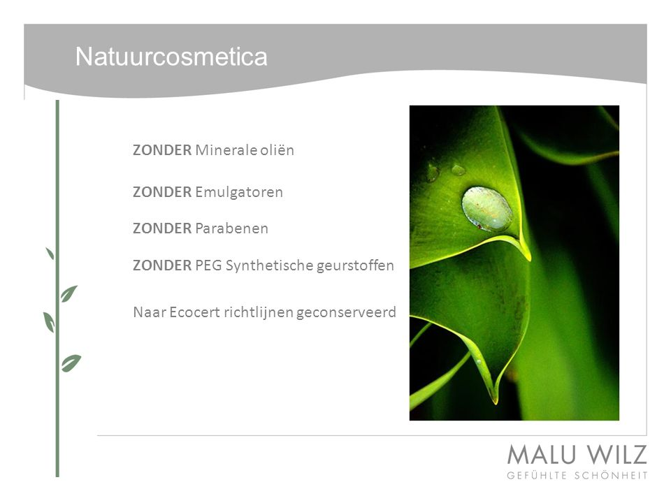 Natuurcosmetica Waarom certificering.Waarom ECOCERT.
