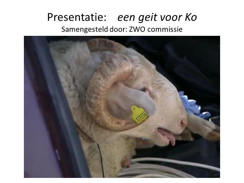 Presentatie: een geit voor Ko Samengesteld door: ZWO commissie