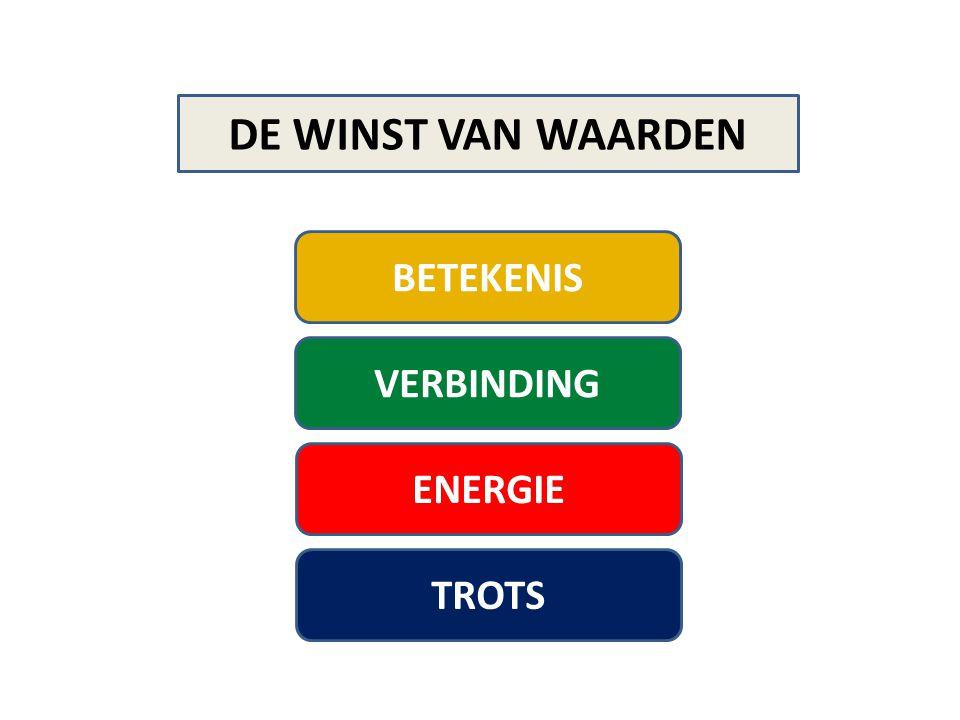 ENERGIE DE WINST VAN WAARDEN HOE .
