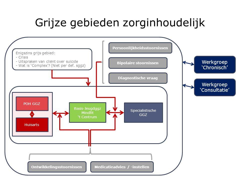 Grijze gebieden zorginhoudelijk P Basis-Jeugdggz Mindfit 't Centrum Specialistische GGZ POH GGZ Huisarts OntwikkelingsstoornissenMedicatieadvies / -in