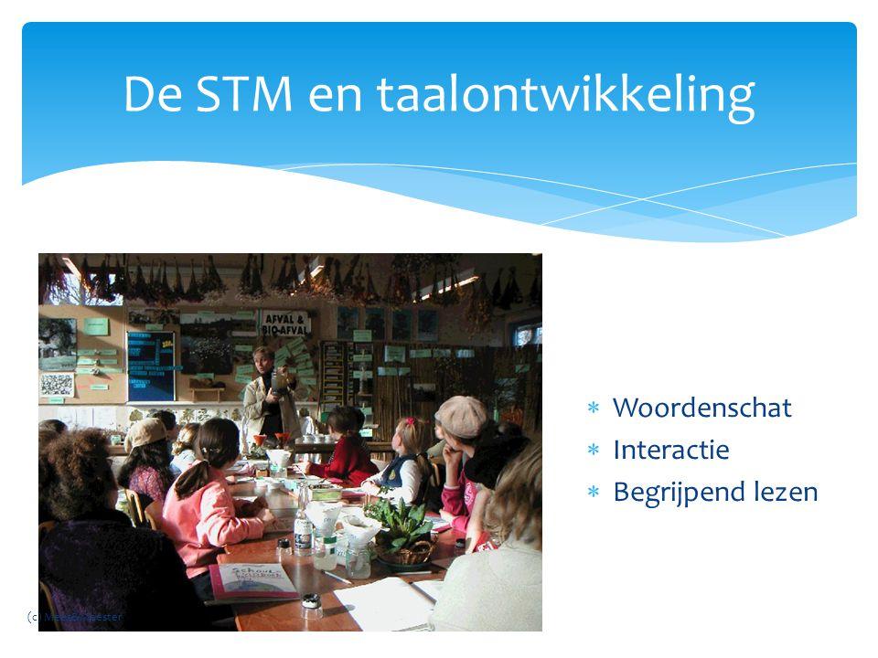 De STM en taalontwikkeling  Woordenschat  Interactie  Begrijpend lezen (c) Mees&Meester