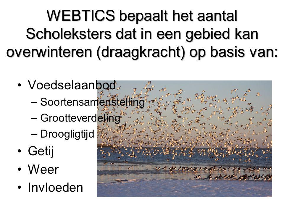 WEBTICS bepaalt het aantal Scholeksters dat in een gebied kan overwinteren (draagkracht) op basis van: •Voedselaanbod –Soortensamenstelling –Grootteverdeling –Droogligtijd •Getij •Weer •Invloeden