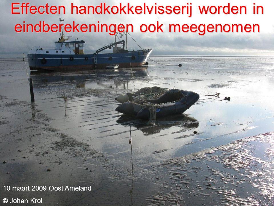 Effecten handkokkelvisserij worden in eindberekeningen ook meegenomen 10 maart 2009 Oost Ameland © Johan Krol