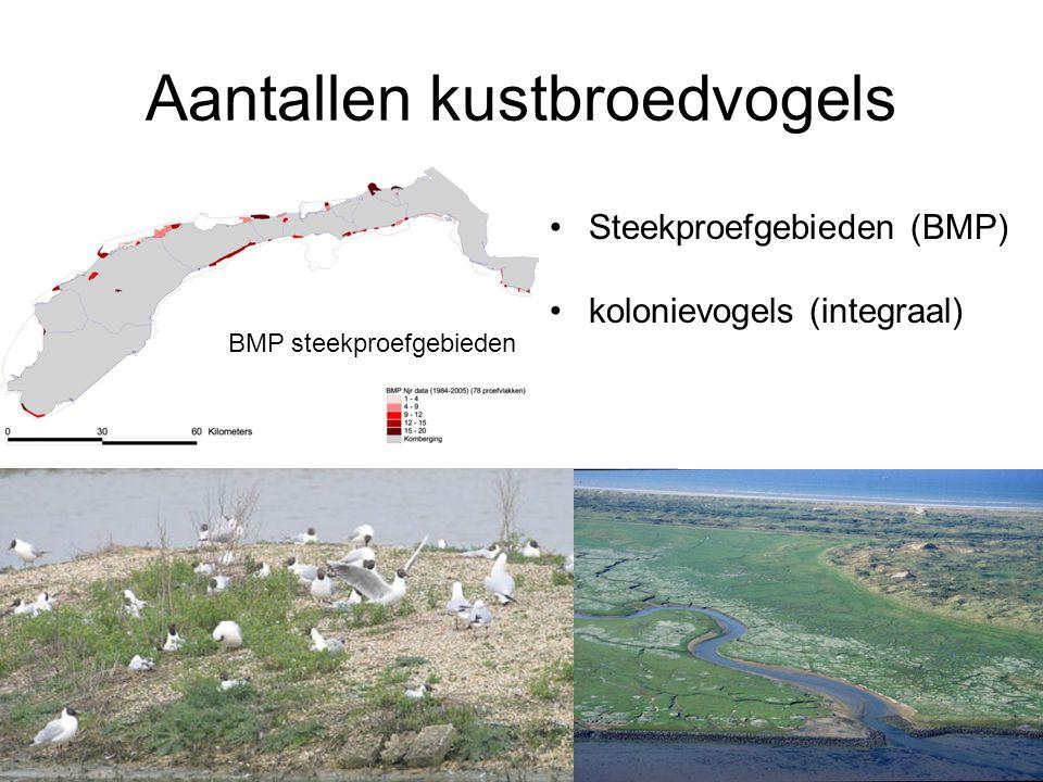 Aantallen kustbroedvogels •Steekproefgebieden (BMP) •kolonievogels (integraal) BMP steekproefgebieden