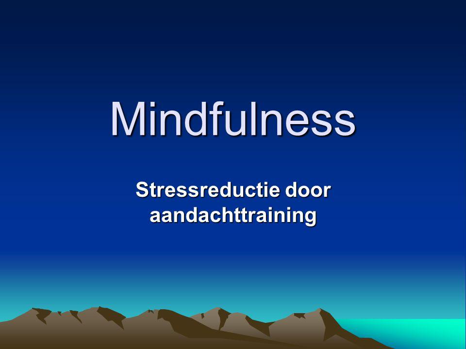 Mindfulness •Engelse vertaling voor sati-pathana sati: direct gewaar zijn pathana: van moment tot moment