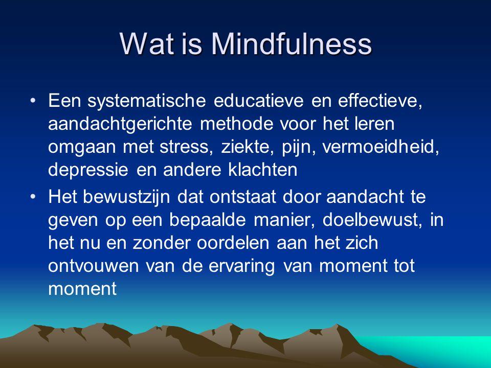 De weg •Er zijn oefeningen ontwikkeld om mindfulness tot stand te brengen.