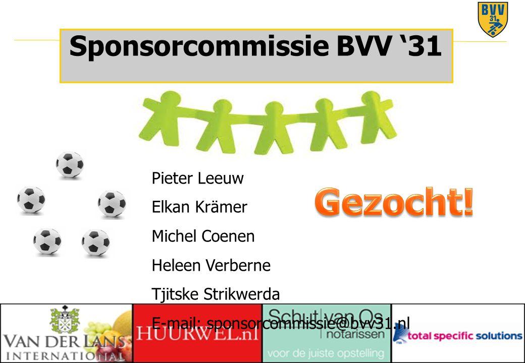 31 © 2010 Sponsorcommissie BVV '31 Pieter Leeuw Elkan Krämer Michel Coenen Heleen Verberne Tjitske Strikwerda E-mail: sponsorcommissie@bvv31.nl