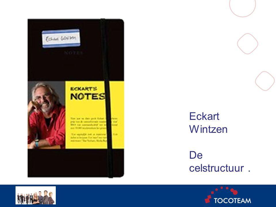Eckart Wintzen De celstructuur.