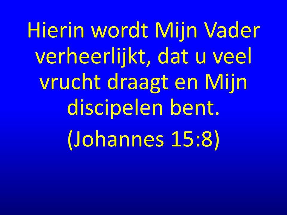 Hierin wordt Mijn Vader verheerlijkt, dat u veel vrucht draagt en Mijn discipelen bent. (Johannes 15:8)