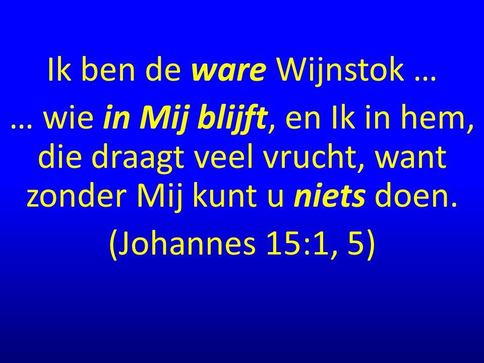 Ik ben de ware Wijnstok … … wie in Mij blijft, en Ik in hem, die draagt veel vrucht, want zonder Mij kunt u niets doen. (Johannes 15:1, 5)