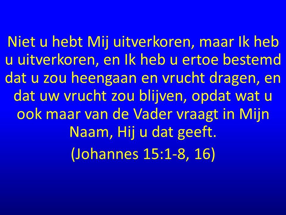 Niet u hebt Mij uitverkoren, maar Ik heb u uitverkoren, en Ik heb u ertoe bestemd dat u zou heengaan en vrucht dragen, en dat uw vrucht zou blijven, opdat wat u ook maar van de Vader vraagt in Mijn Naam, Hij u dat geeft.