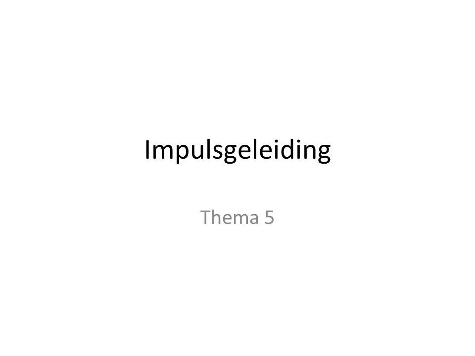 Impulsgeleiding Thema 5