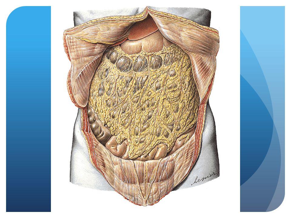 Rectum operaties  Abdominoperineale resectie, sluitspier wordt weggenomen, colostoma  Low anterior resectie, anastomose met/zonder beschermend ileostoma  Hartmann resectie, geen anastomose, colostoma