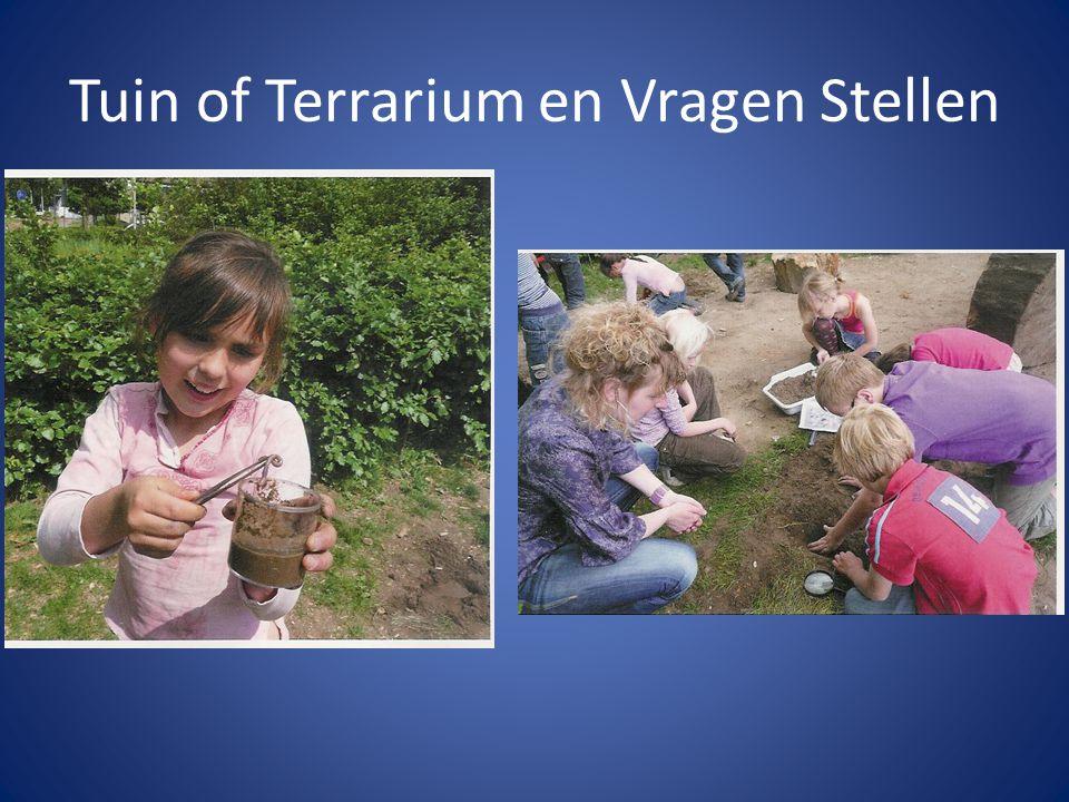 Tuin of Terrarium en Vragen Stellen