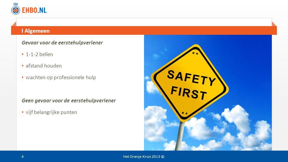 Beeld en tekst gelijk II Vitale functies Het Oranje Kruis 2013 ©25 Stoornissen in de ademhaling: geen letsel • ondersteun het slachtoffer • in principe geen plastic zak o.i.d.