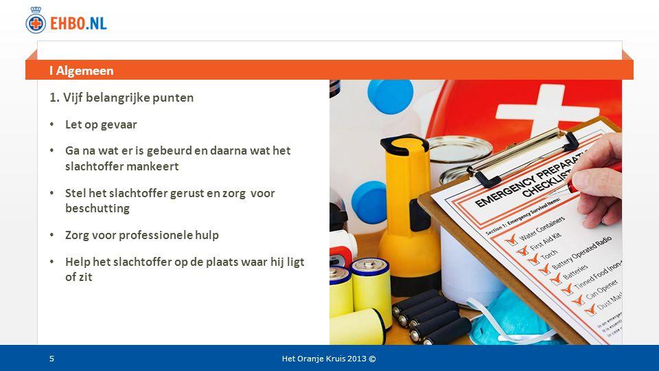 Beeld en tekst gelijk I Algemeen Het Oranje Kruis 2013 © 1. Vijf belangrijke punten • Let op gevaar • Ga na wat er is gebeurd en daarna wat het slacht