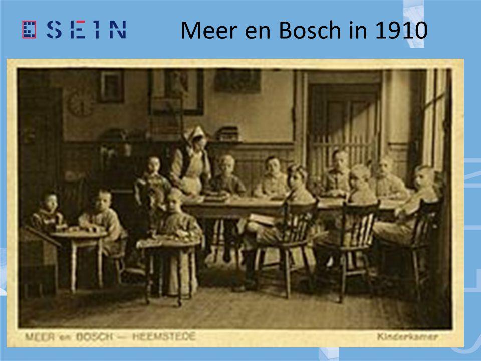 Meer en Bosch in 1910