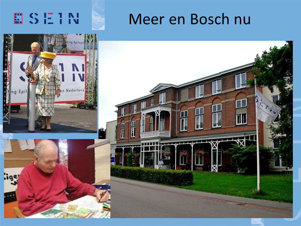 Meer en Bosch nu
