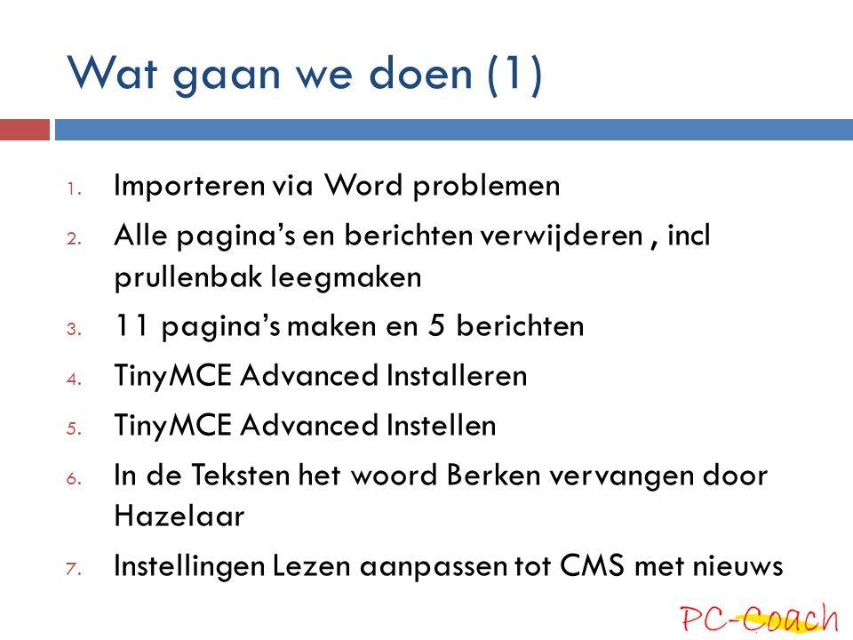 Wat gaan we doen (1) 1. Importeren via Word problemen 2.