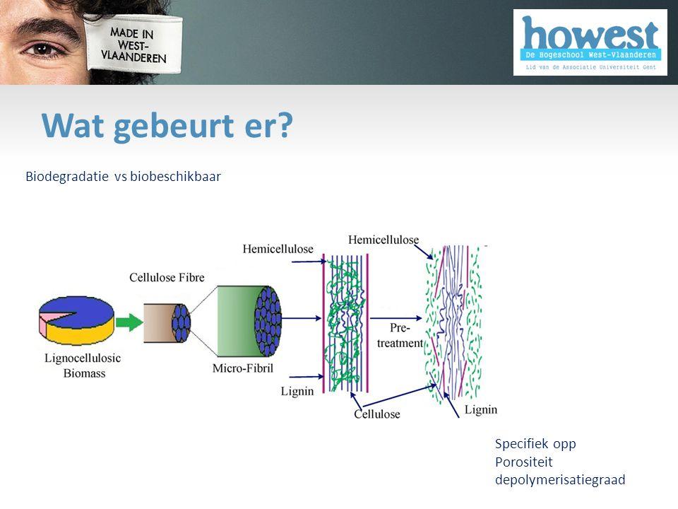 Wat gebeurt er? Specifiek opp Porositeit depolymerisatiegraad Biodegradatie vs biobeschikbaar