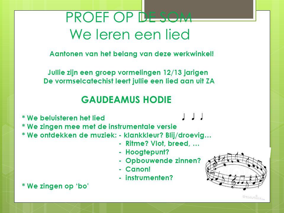 PROEF OP DE SOM We leren een lied Aantonen van het belang van deze werkwinkel! Jullie zijn een groep vormelingen 12/13 jarigen De vormselcatechist lee