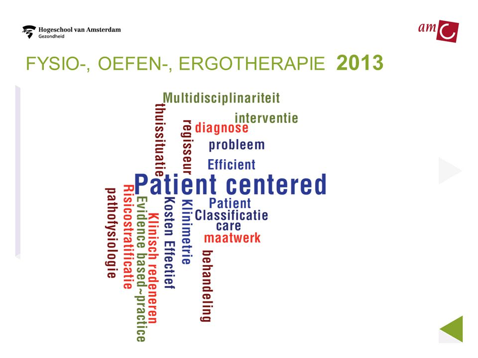 FYSIO-, OEFEN-, ERGOTHERAPIE 2013