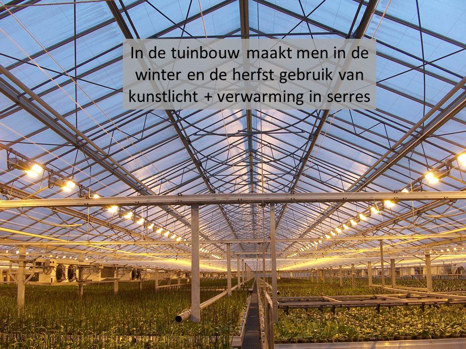 Planten hebben licht nodig om te groeien en om bladgroen aan te maken.
