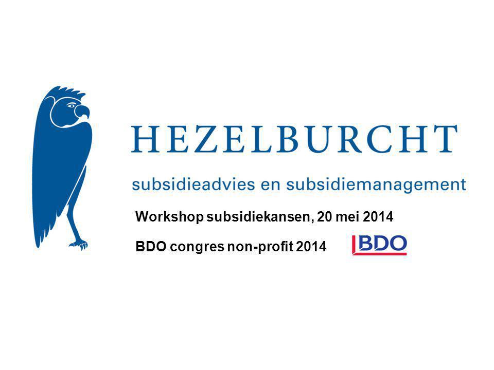 BDO congres non-profit 2014 Workshop subsidiekansen, 20 mei 2014