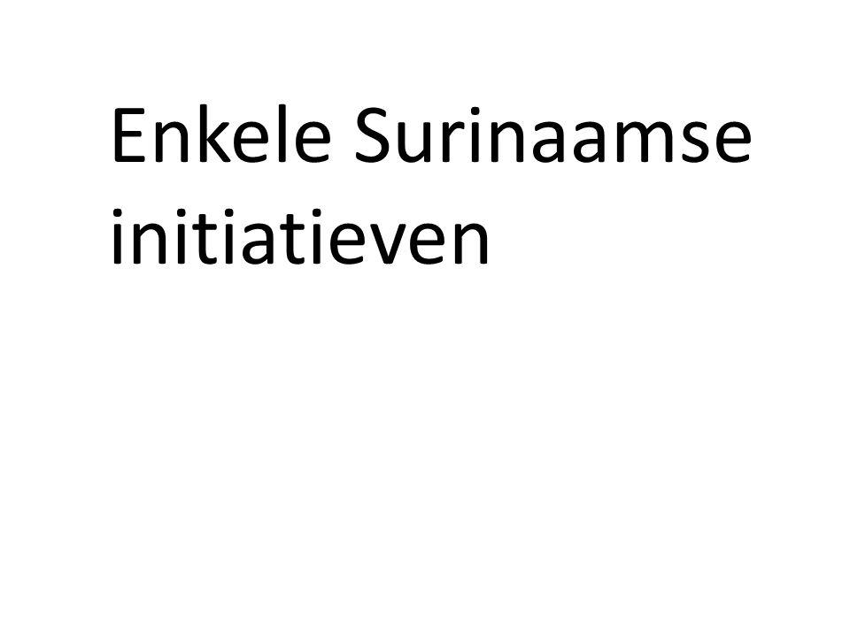 Enkele Surinaamse initiatieven