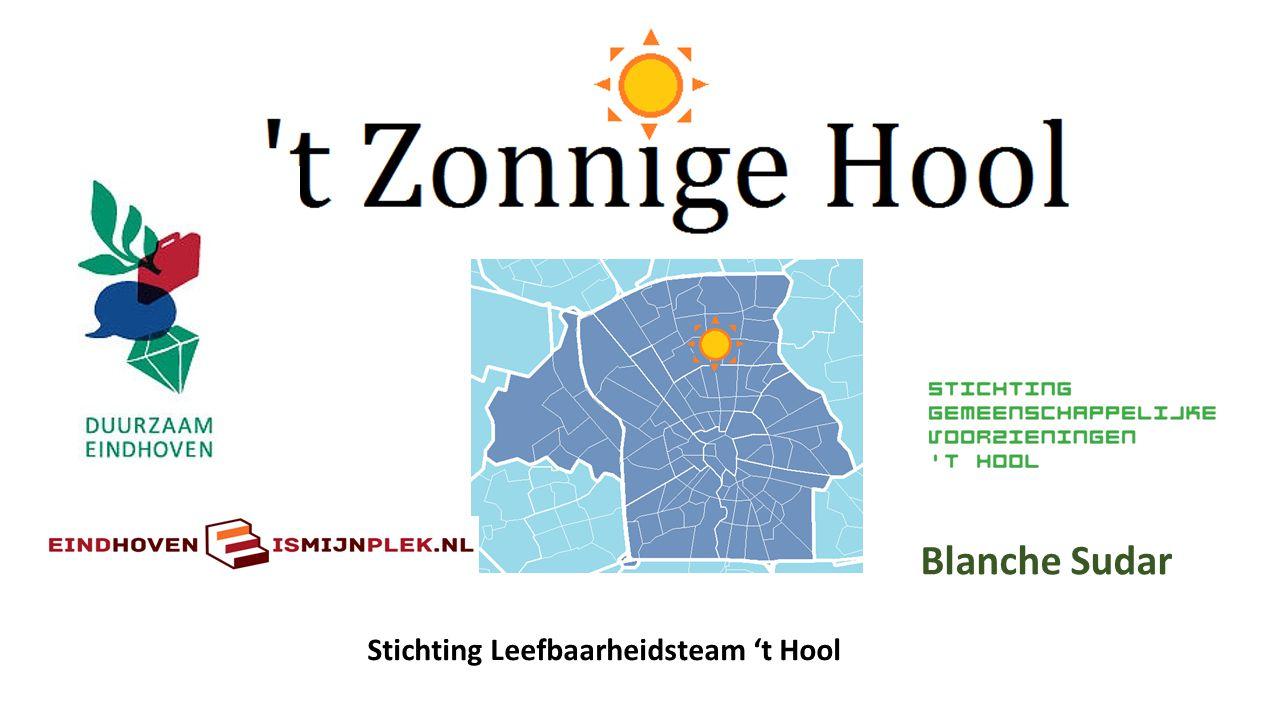 Stichting Leefbaarheidsteam 't Hool Blanche Sudar