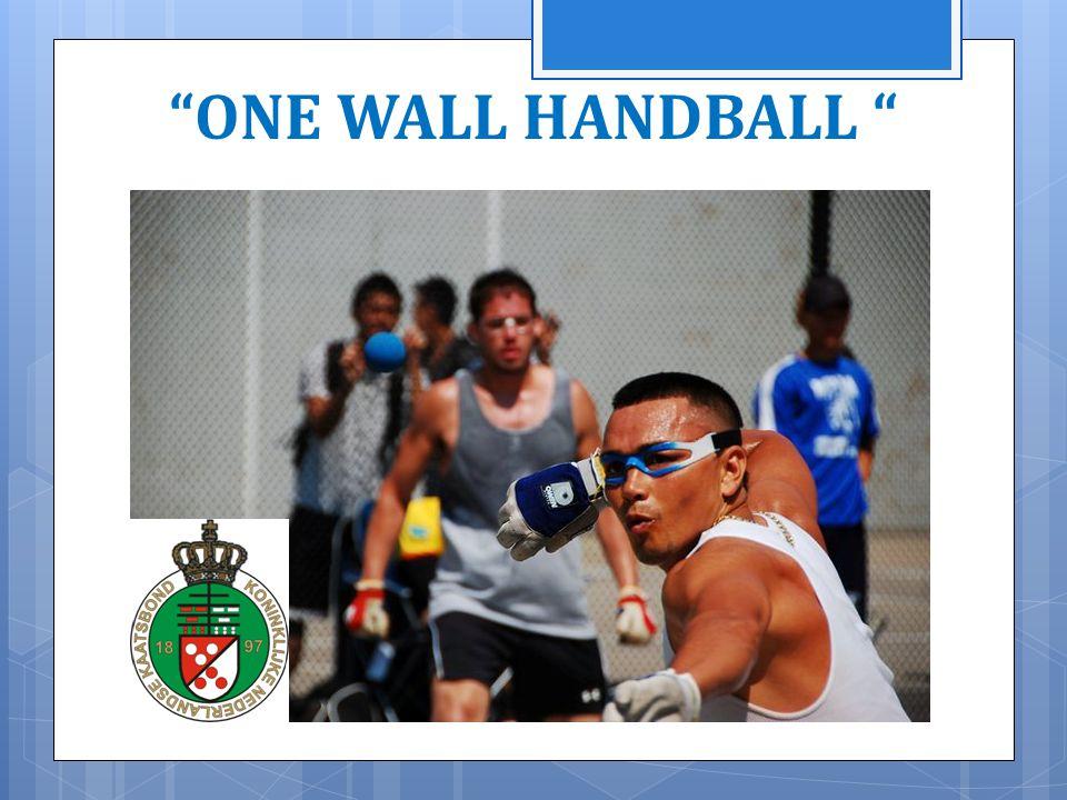 Programma  One Wall Handball ?  Geschiedenis  Landen  Courts  Rules  Sites  Vragen