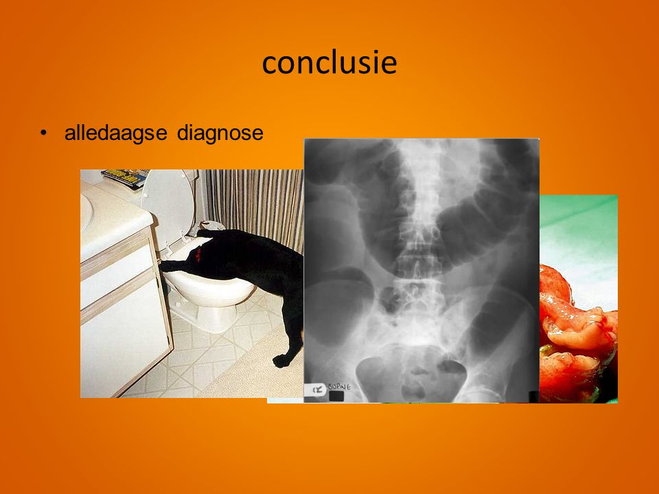 conclusie •alledaagse diagnose