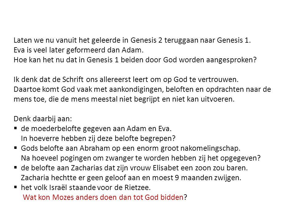 Laten we nu vanuit het geleerde in Genesis 2 teruggaan naar Genesis 1. Eva is veel later geformeerd dan Adam. Hoe kan het nu dat in Genesis 1 beiden d